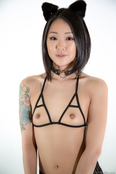 Petite Asian girl Saya Song laps at her bowl in cat ears cupless bra
